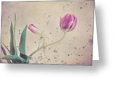 Stained Tulip Greeting Card by Cristina-Velina Ion