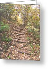 Stairs Into The Forest Greeting Card