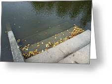 Stairs Leading Into Water Greeting Card by Matthias Hauser