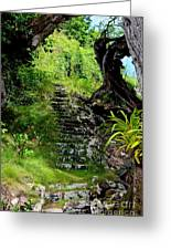 Stairway Through The Forest Greeting Card