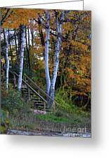 Stairway To Fall Greeting Card