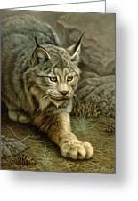Stalking Lynx Greeting Card