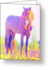 The Stallion Came To Me In A Dream Greeting Card