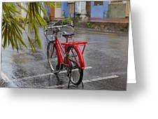 Standing In The Rain Penang Greeting Card