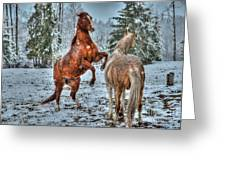 Standing In The Snow Greeting Card by Skye Ryan-Evans