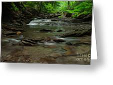 Standing In The Stream Greeting Card