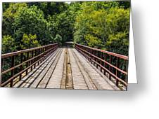 Standing On A Bridge Greeting Card