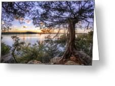Standing Sentinel - Arkansas - Cadron Settlement Park Greeting Card