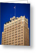 Standing Tall In San Antonio Greeting Card