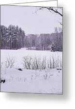 Standing Up To Winter Greeting Card