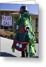Stanford Tree Mascot Beat Cal Greeting Card