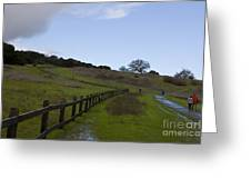 Stanford University The Dish Hiking Trail Greeting Card