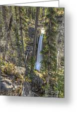 Stanley Falls At Beauty Creek Greeting Card