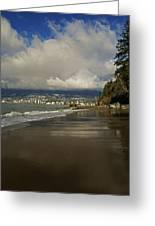 Stanley Park Beach Greeting Card