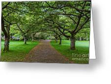 Stanley Park Greeting Card