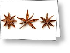 Star Anise Fruits Greeting Card