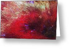 Star Burst - Red Abstract Art By Sharon Cummings Greeting Card