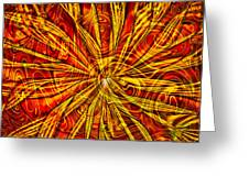 Star Light Star Bright Greeting Card