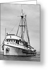 Star Of Monterey In Monterey Harbor Circa 1948 Greeting Card