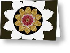 Star Of Stars Greeting Card