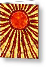 Star Shine Greeting Card