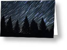 Star Trails And Pine Trees Greeting Card