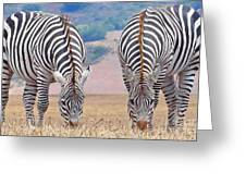 Stares And Stripes Greeting Card