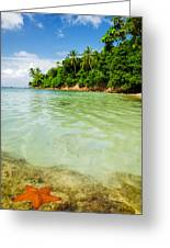 Starfish And Clear Water Greeting Card