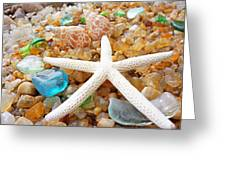 Starfish Art Prints Shells Agates Coastal Beach Greeting Card by Baslee Troutman