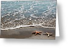 Starfish Catching The Waves Greeting Card