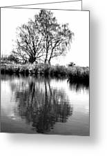 Stark Reflections Greeting Card