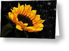 Starlight Sunflower Greeting Card