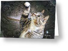 Starry Night Kitty Style - Featured  In Comfortable Art Group Greeting Card
