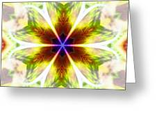 Starseed Rainbow Greeting Card