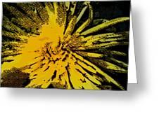 Starstruck Greeting Card