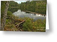 Starvation Lake - British Columbia Greeting Card