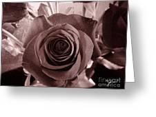 Static Rose Greeting Card