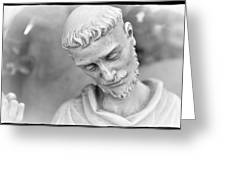 Statue 2 Greeting Card