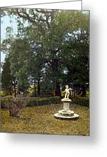 Statue And Tree Greeting Card