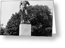 Statue Of David Delaware Park Buffalo Ny Greeting Card