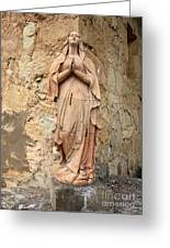 Statue Of Mary In Mission Garden Greeting Card