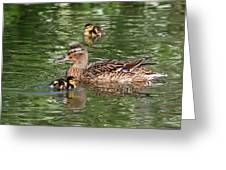 Staying Close To Mom Greeting Card