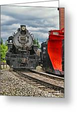 Steam Train Tr3637-13 Greeting Card