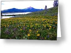 Steamboat Lake And Mt. Hahn Greeting Card