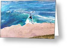 Steamer Lane Greeting Card by Peter Forbes