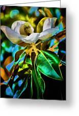 Steel Magnolia Greeting Card