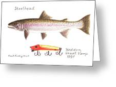 Steelhead And Heddon Great Vamp Lure 1937 Greeting Card