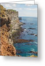 Steep Coast In Iceland Greeting Card