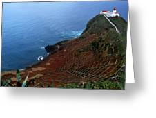 Steep Vineyards Greeting Card