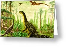 Stegosaurus And Compsognathus Dinosaurs Greeting Card